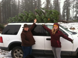 Hun Kate tree on SUV