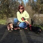 etcguy Leigh Anne Jasheway dachshund pack